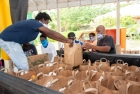 National Food Distribution Task Force feeding thousands of people in need